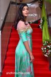 anisha_ambrose_new_stills_3004170234_008 copy.jpg